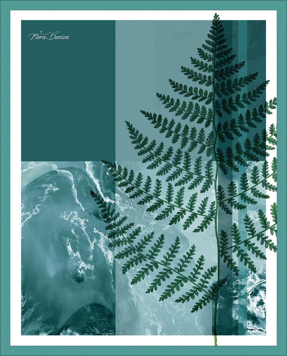 Fern ii poster print incado for Mediaworld lavatrici slim