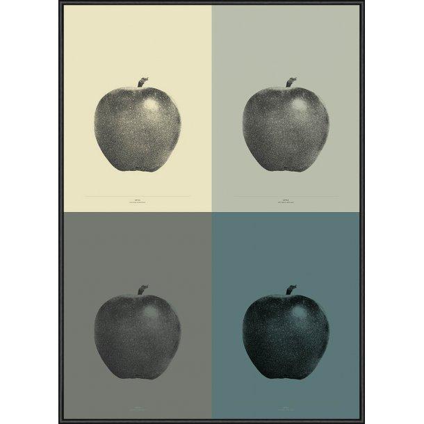 Apple - 4-Colour