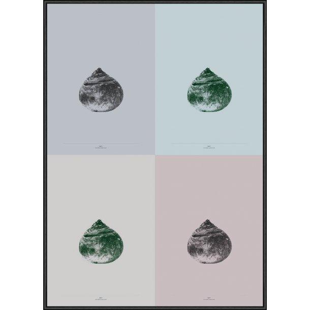 Beet - 4-Colour