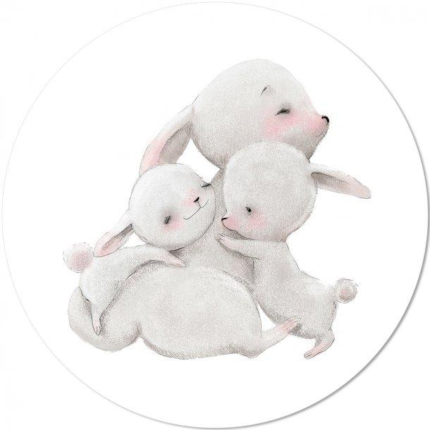 Bunny Boo Family